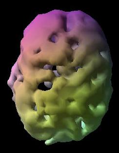 Unhealthy Brain
